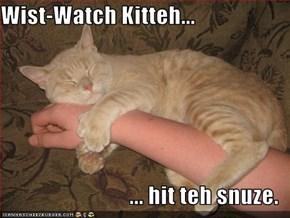 Wist-Watch Kitteh...  ... hit teh snuze.
