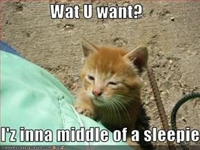 Wat U want?  I'z inna middle of a sleepie