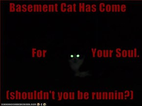 Basement Cat Has Come               For                    Your Soul.   (shouldn't you be runnin?)