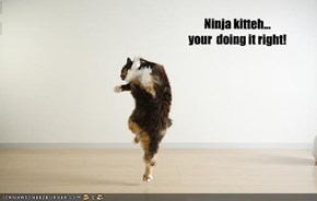 Ninja kitteh... your  doing it right!