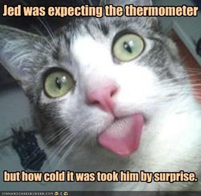 Jed was expecting the thermometer