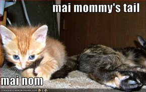 mai mommy's tail  mai nom