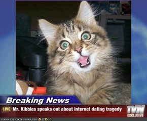 Breaking News - Mr. Kibbles speaks out about internet dating tragedy