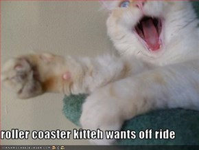 roller coaster kitteh wants off ride