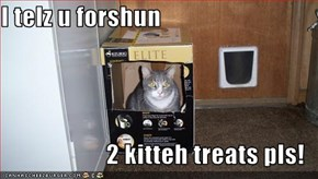 I telz u forshun  2 kitteh treats pls!