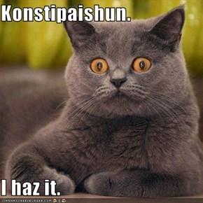 Konstipaishun.  I haz it.