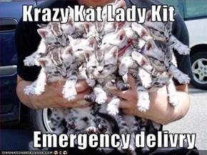 Krazy Kat Lady Kit  Emergency delivry