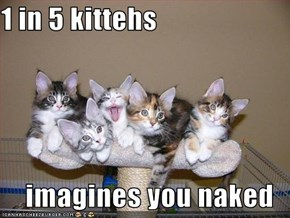 1 in 5 kittehs  imagines you naked