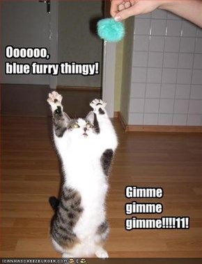 Oooooo, blue furry thingy!