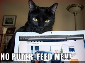 NO PUTER, FEED ME!!!