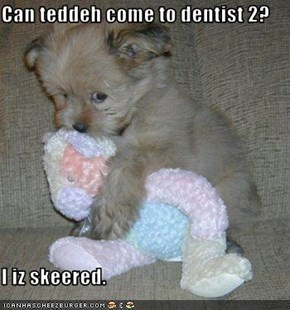 Can teddeh come to dentist 2?  I iz skeered.