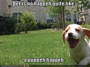 Der is no happeh quite like   a puppeh happeh