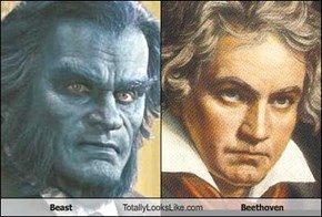 Beast Totally Looks Like Beethoven