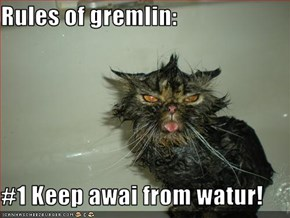 Rules of gremlin:  #1 Keep awai from watur!