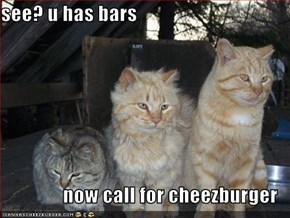 see? u has bars  now call for cheezburger