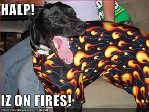 HALP!  IZ ON FIRES!