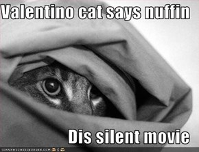 Valentino cat says nuffin  Dis silent movie