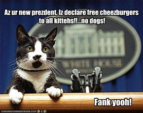 Az ur new prezdent, Iz declare free cheezburgers  to all kittehs!!...no dogs!