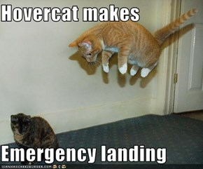 Hovercat makes   Emergency landing