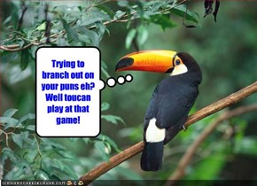 Trying to branch out on your puns eh? Well toucan play at that game!