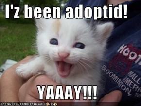 I'z been adoptid!  YAAAY!!!