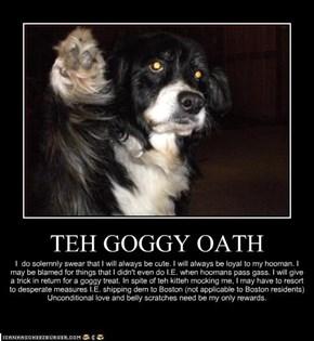 TEH GOGGY OATH