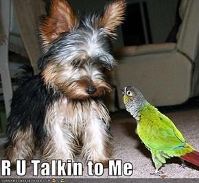 R U Talkin to Me