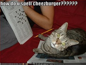 how do u spell cheezburger??????
