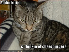 Rodin kitteh  iz thinkin of cheezburgers