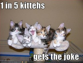 1 in 5 kittehs   gets the joke
