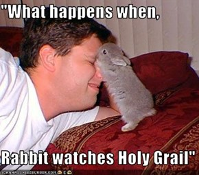 """What happens when,  Rabbit watches Holy Grail"""