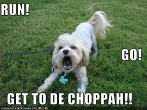 RUN! GO! GET TO DE CHOPPAH!!