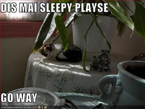 DIS MAI SLEEPY PLAYSE  GO WAY