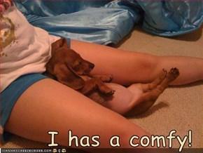 I has a comfy!