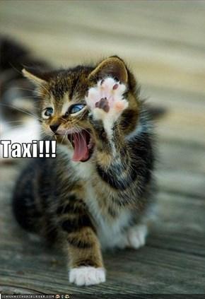 Taxi!!!