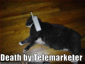 Death by Telemarketer