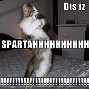 Dis iz SPARTAHHHHHHHHHHHH !!!!!!!!!!!!!!!!!!!!!!!!!!!!!!!