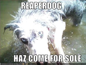 REAPERDOG  HAZ COME FOR SOLE