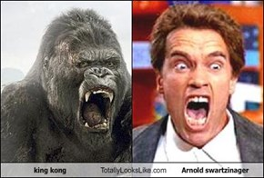 king kong Totally Looks Like Arnold swartzinager