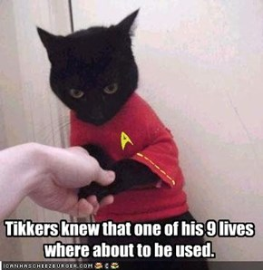 Tikkers knew that one of his 9 lives where about to be used.