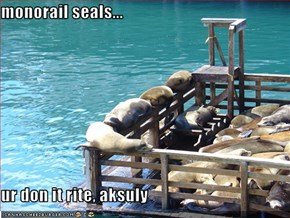 monorail seals...  ur don it rite, aksuly