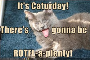 It's Caturday!  There's             gonna be ROTFL-a-plenty!