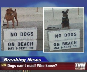 Breaking News - Dogs can't read! Who knew?