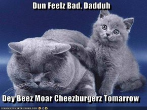 Dun Feelz Bad, Dadduh  Dey Beez Moar Cheezburgerz Tomarrow