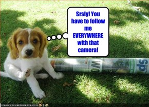 Srsly! You have to follow me EVERYWHERE with that camera!