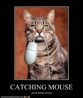 CATCHING MOUSE