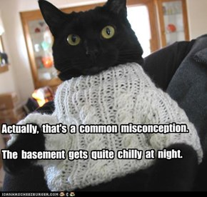 Actually,  that's  a  common  misconception.  The  basement  gets  quite  chilly  at  night.
