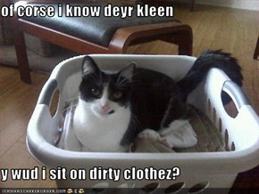 of corse i know deyr kleen  y wud i sit on dirty clothez?
