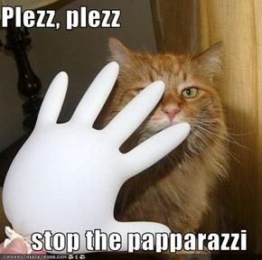 Plezz, plezz  stop the papparazzi