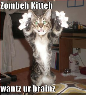 Zombeh Kitteh  wantz ur brainz